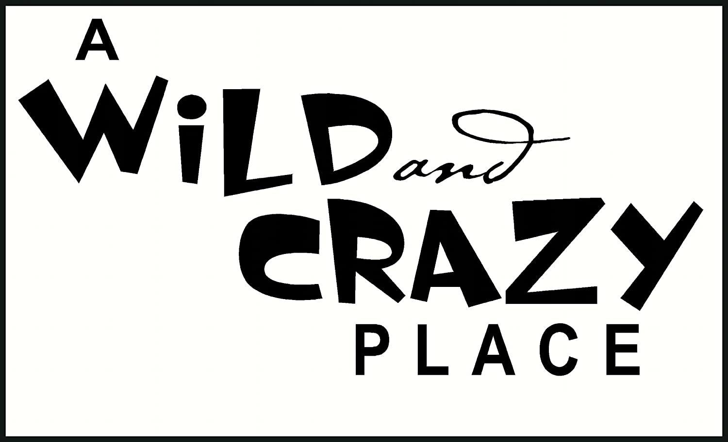 Wall Decor Plus More A Wild And Crazy Place Wall Sticker Saying for Nursery or Kids Room Decor 23W x 12H Black Black