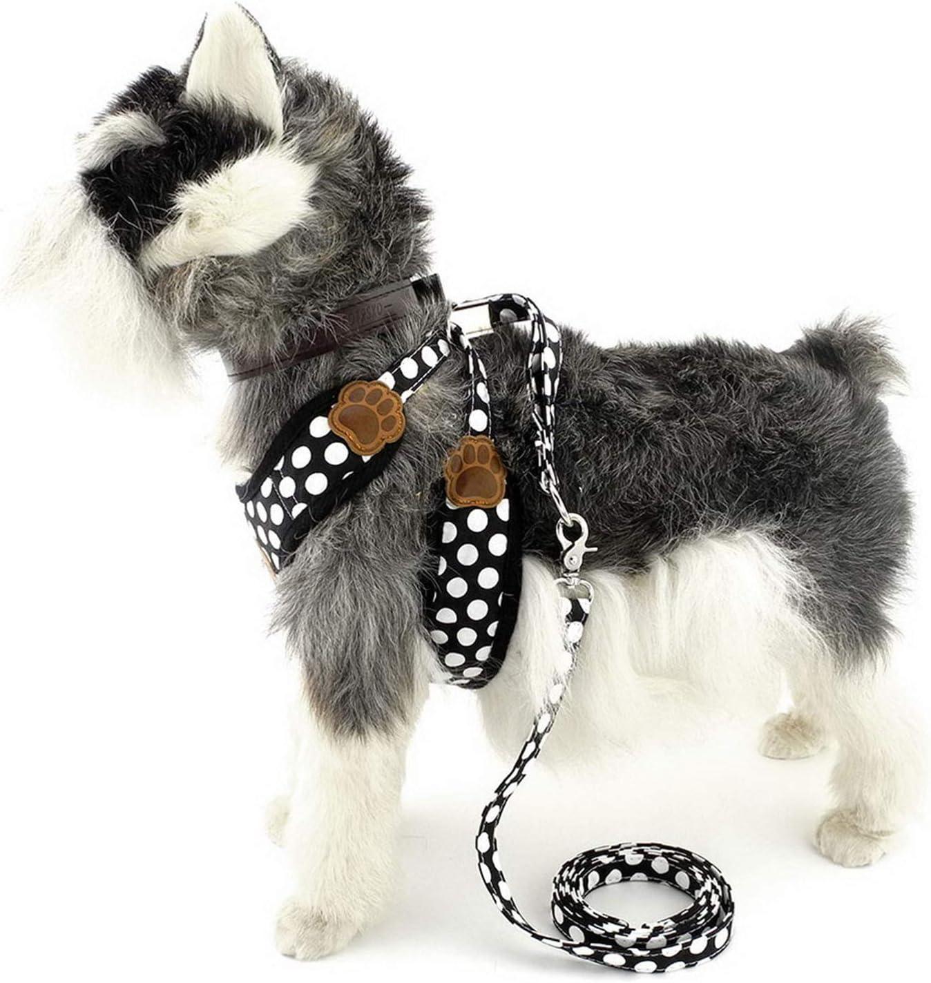 Zunea Nylon Weich Mesh atmungsaktiv Pet Welpe Kleiner Hund Cat Weste Geschirr und Leine f/ührt verstellbar ohne Pull Walking Kontrolle