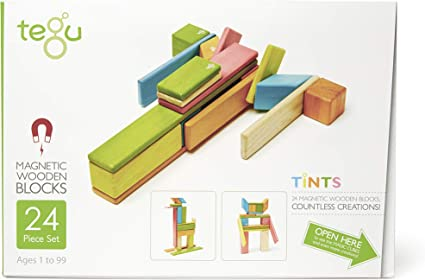 Tints Tegu 42 Piece Magnetic Wooden Block Set