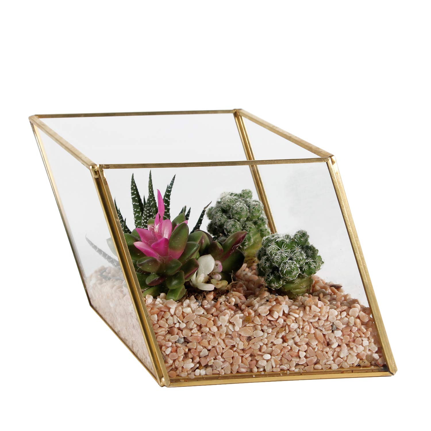 Kimdio Geometric Terrarium Clear Glass Tabletop Planter Air Plant Holder Display for Succulent Fern Moss Air Plants Holder Miniature Outdoor Fairy Garden DIY Gift