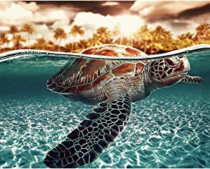 Chaoyue DIY 5D Diamond Painting by Number Kits,Full Drill Crystal Rhinestone Embroidery Pictures Arts Craft for Home Wall Decoration-Sea Turtle,25x20cm/9.84x7.87inch