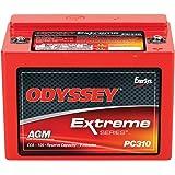 ODYSSEY Batteries PC310-P Powerports Battery