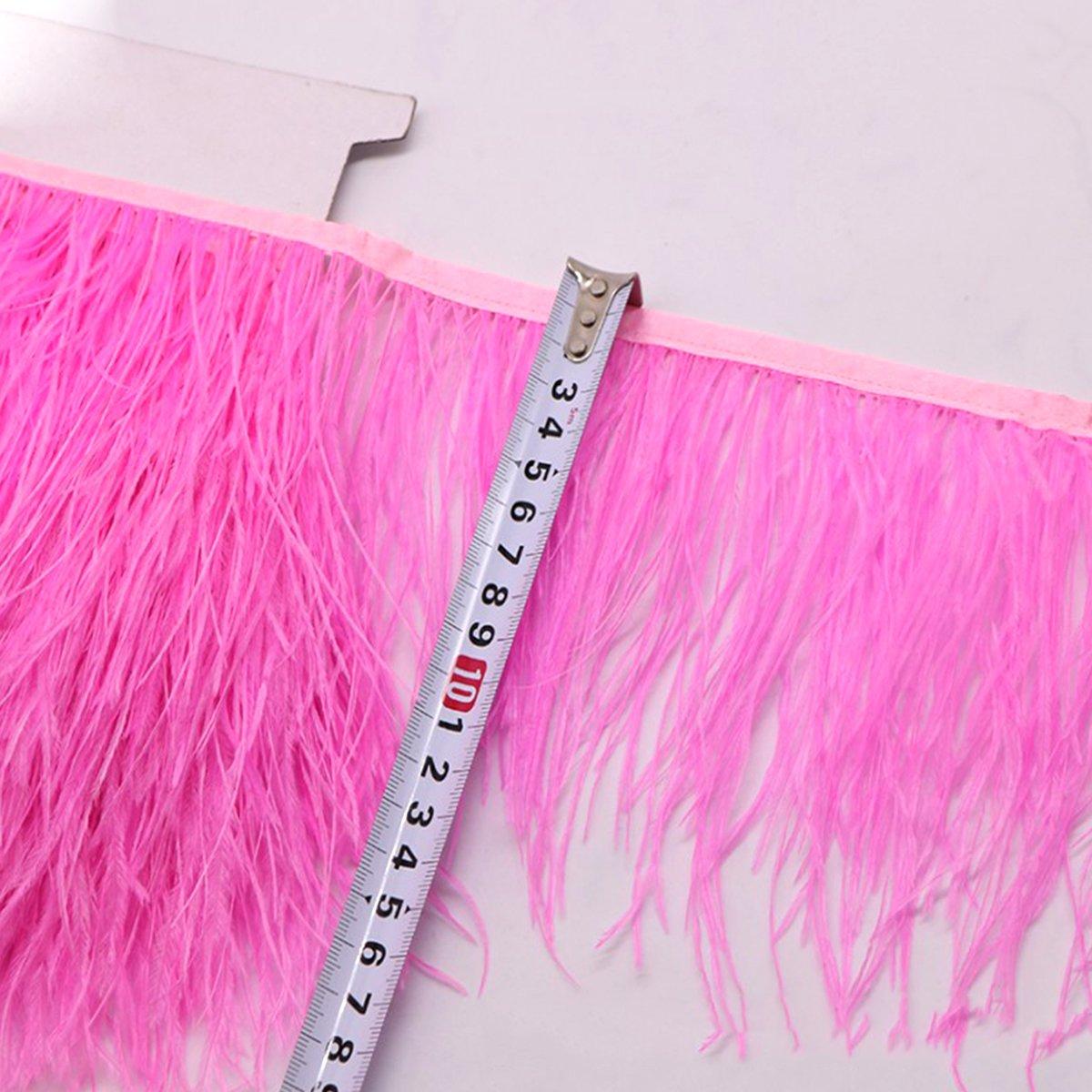 Rose Medium rosenice 2/m Ressort franges ruban autruche plumes Ressort pour v/êtements DIY Couture Artisanat