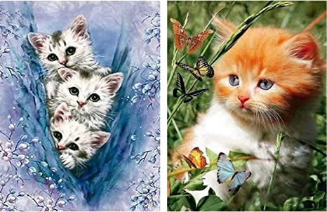 DIY 5D Diamond Painting Kits for Adult Round Full Drill Embroidery Cross Stitch Paint with Diamonds Arts Craft Gift for Home Wall Decor Cat 12x16
