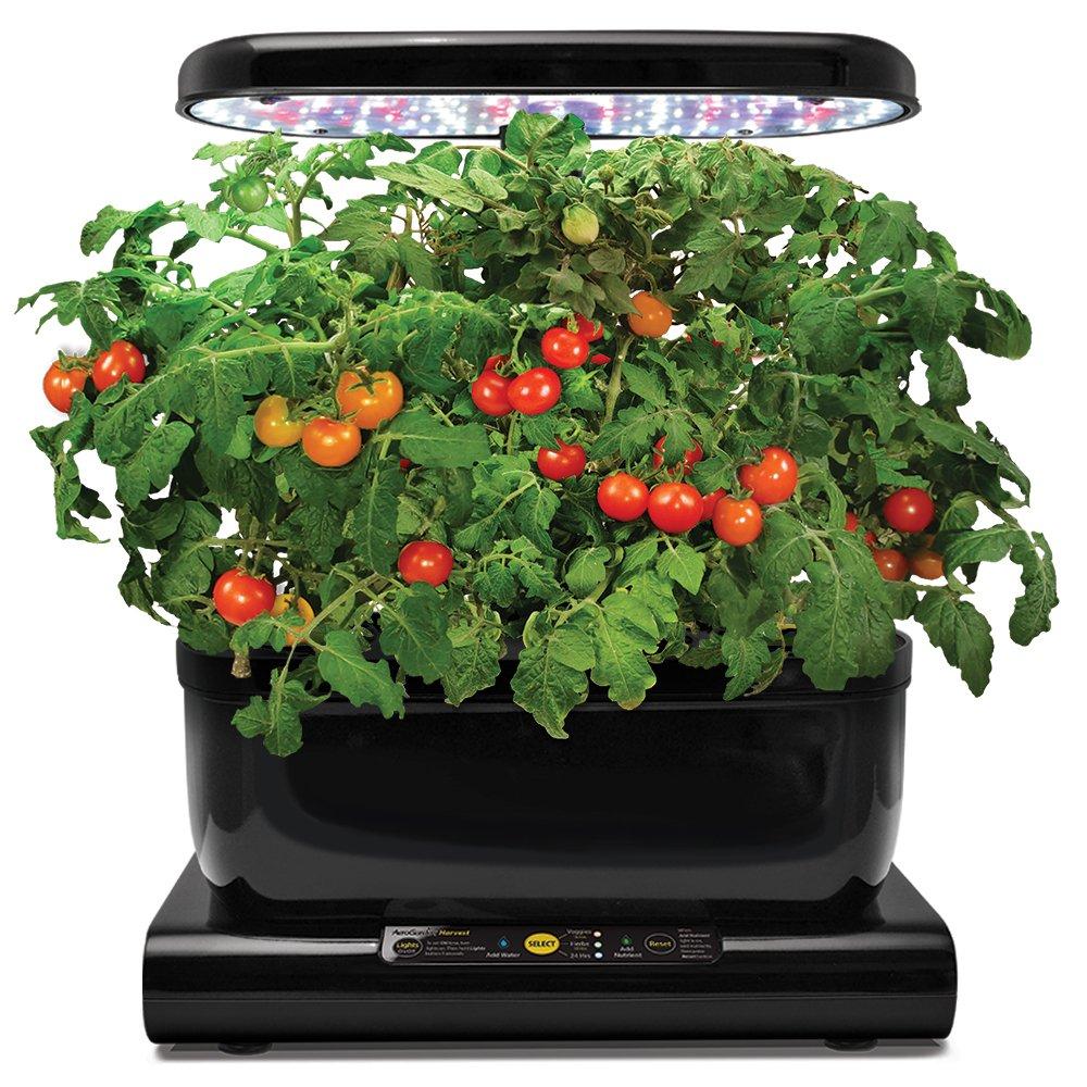 AeroGarden Red Heirloom Cherry Tomato kid for Harvest & Classic 6 ...