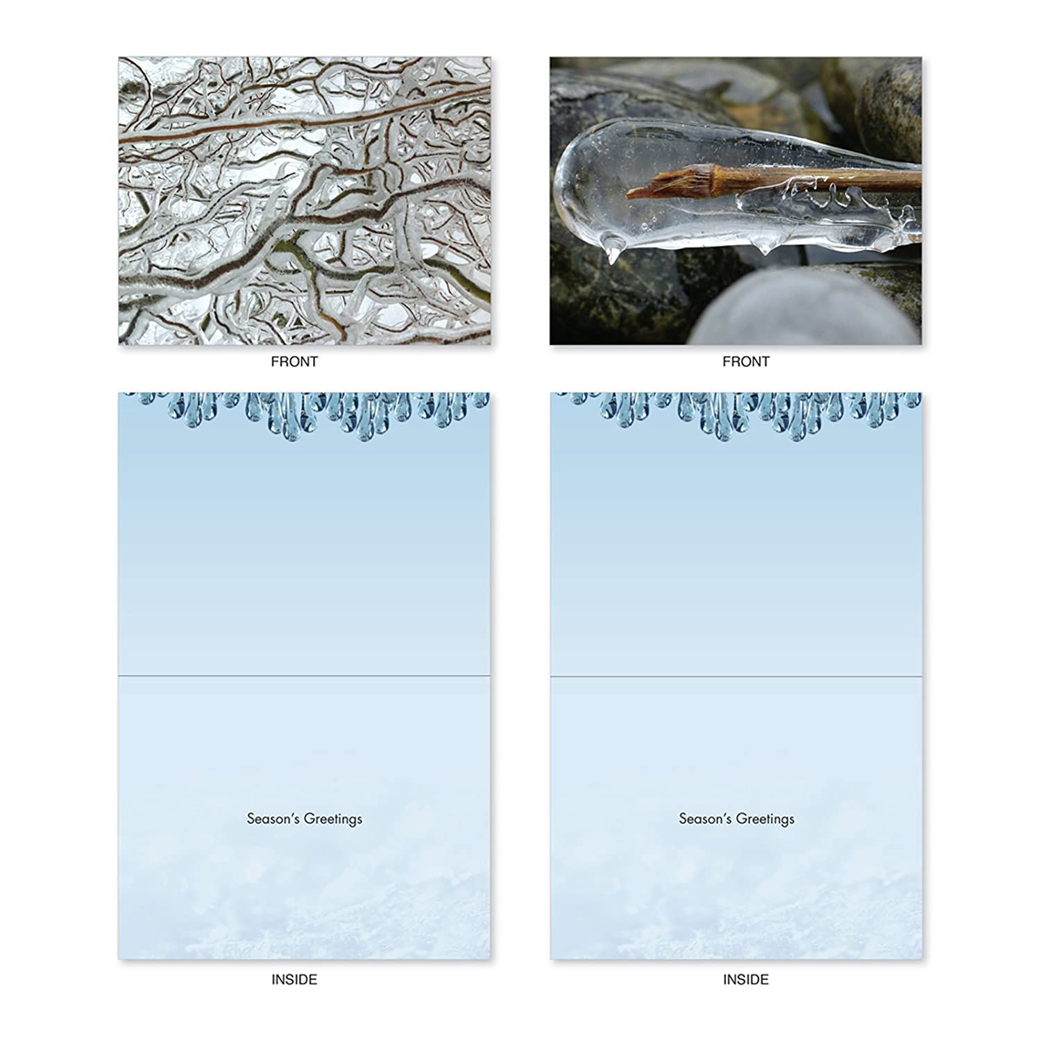 Amazon M2279 Nature On Ice 10 Assorted Christmas Note Cards