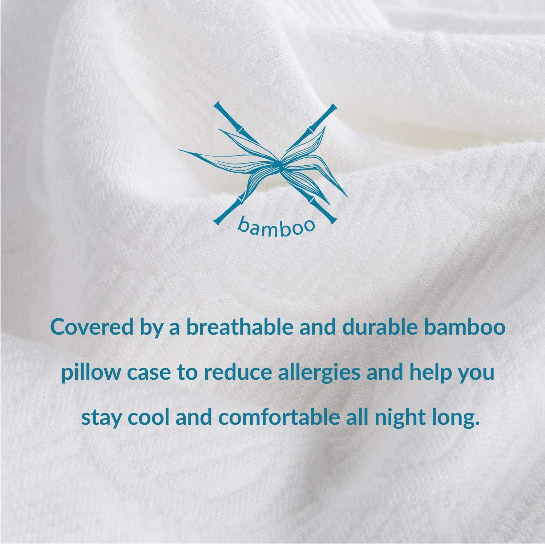 Bedsure Bio-Zero Kopfkissen Orthopädisches Nackenstützkissen Memory Schaum Viskoelastisch 15cm Höhe - Druckausgleiches Kissen für Rücken- und Seitenschläfer mit Waschbaren Kissenbezug aus Bambus