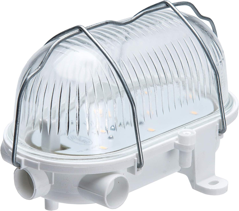 5W 4000K 570lm Oval 60 12V / 24V LED Lámpara de luz de mampara ...