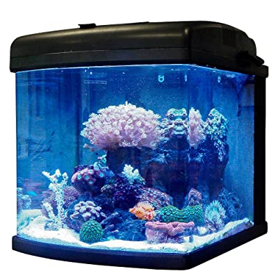 JBJ Nano Cube 28 Gallon Aquarium