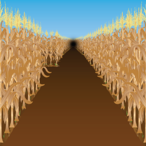 Corn Mazes ()