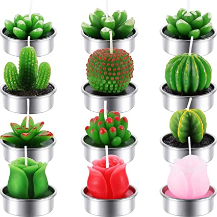 12 Velas de té de Cactus Hechas a Mano con Rosas suculentas para Fiestas de té