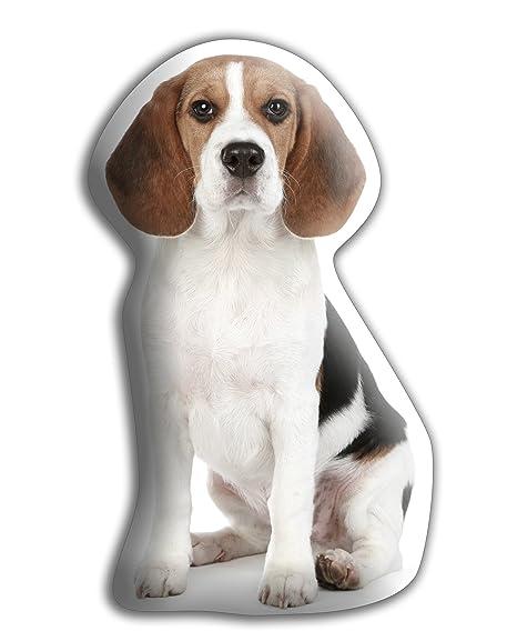 Beagle Hound perro regalo - hermoso grande Cuddle cojín ...