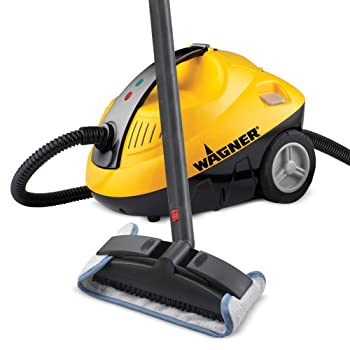 Wagner Spraytech On-demand Steamer Cleaner