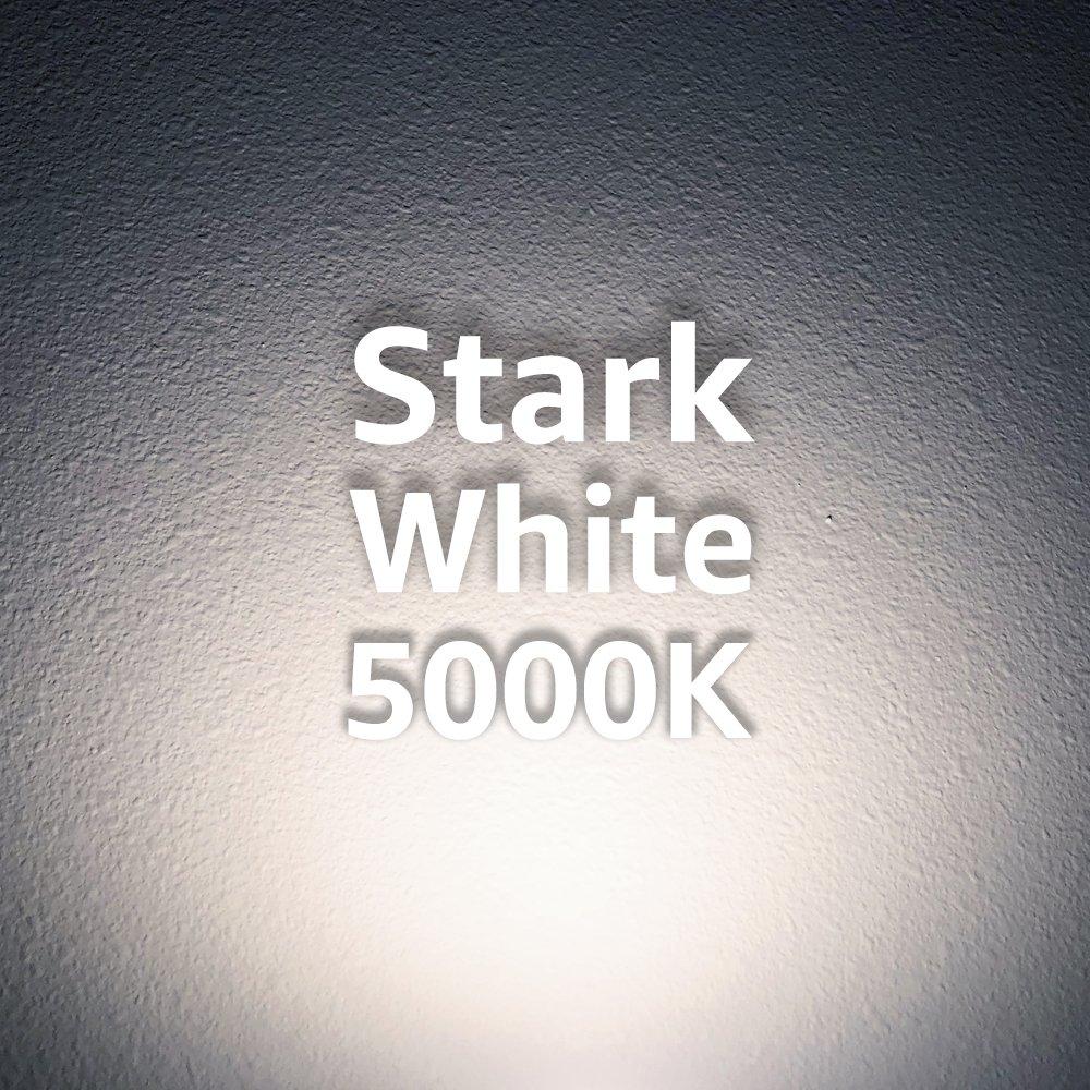 Euri Lighting EP38-1050ew LED PAR38 Bulb, Everyday Line, Cool White 5000K, Dimmable, 18W (100W Equivalent), 1500 lm, 40 Degree Beam Angle, Medium Base (E26), UL & Energy Star Listed, IP65