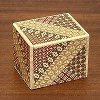 Bits and Pieces - Detailed Mosaic Secret Box - Size Large, 11 Step Solution - Wooden Brainteaser - Secret Compartment…