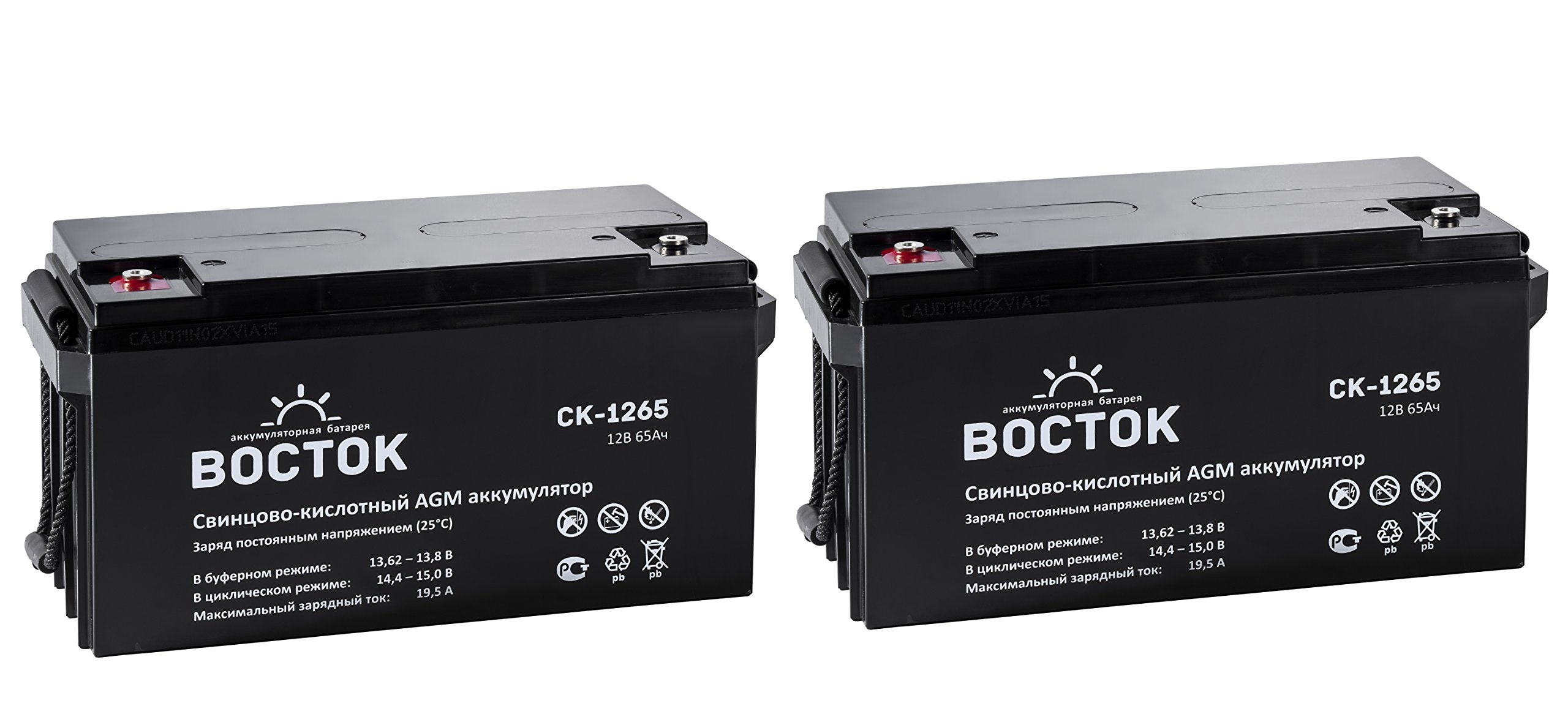 Bockok 12V 65 Amp NP12 65Ah Rechargeable Lead Acid Battery With Button Style Terminals Pack Of 2