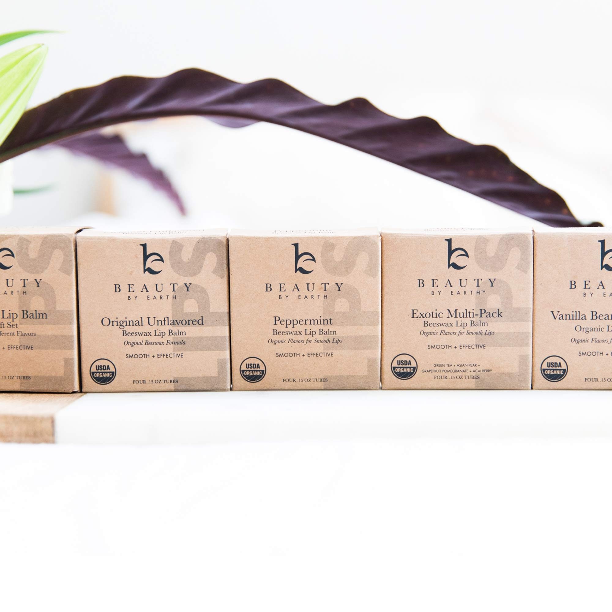 Organic Lip Balm Honey Vanilla - 4 Tubes of Natural Lip Balm, Lip Moisturizer, Lip Treatment for Dry Lips, Lip Care Gifts for Women or Men, Lip Repair, Organic Chapstick, Stocking Stuffer Ideas by Beauty by Earth