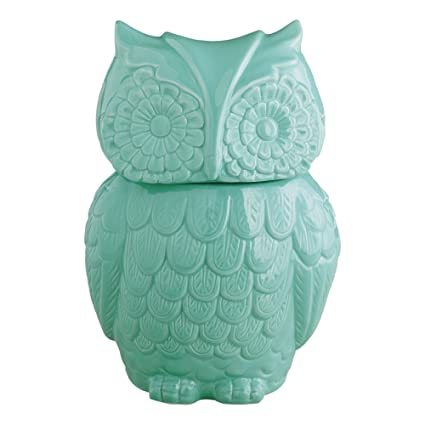 Amazoncom Aqua Blue Ceramic Owl Cookie Jar Kitchen Storage