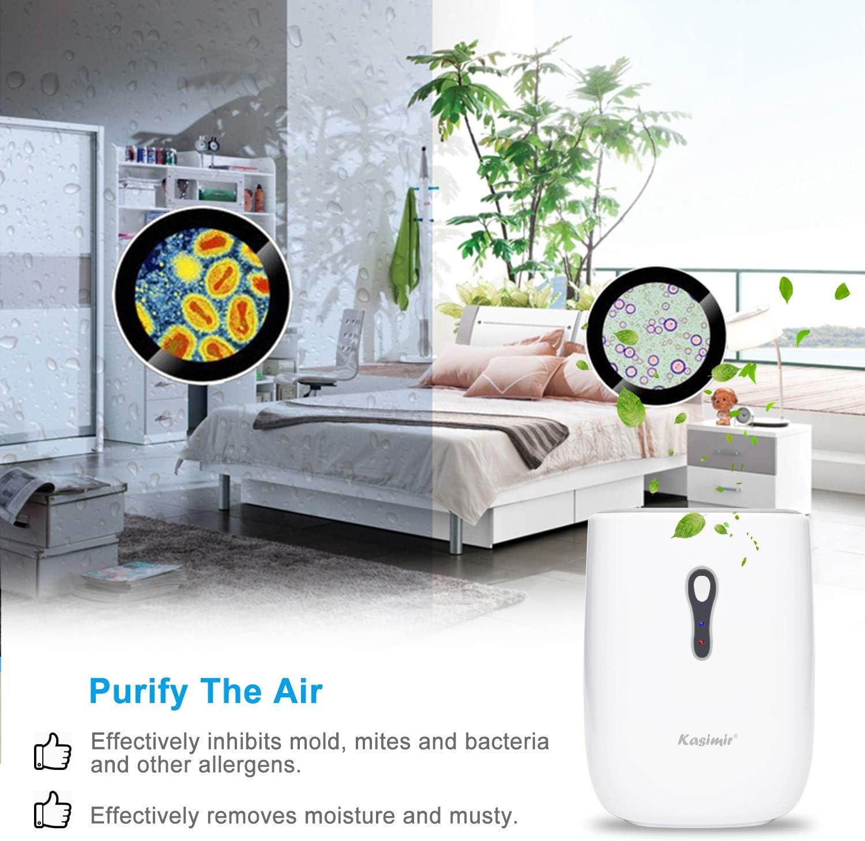 Amazon.de: Luftentfeuchter Kasimir DH20E Mini Elektrischer