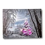 Amazon Price History for:Winter Scene Wall Art - Light Up Picture with Cardinals and Christmas Trees - Snowy Day in the Woods