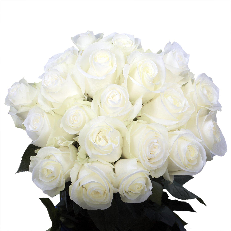 Amazon Globalrose 50 White Roses Long Stem Flower Deliveryfor