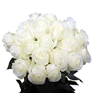 GlobalRose 50 White Roses - Real Flowers Express Delivery - Natural Long Stem Roses