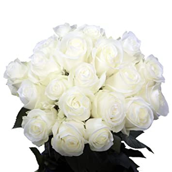 Amazon Com Globalrose 50 Fresh White Roses Fresh Cut Flower