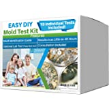 Evviva Sciences Mold Test Kit for Home - 10 Simple Mold Detection Tests - Optional Lab Analysis - Test HVAC System, Room…