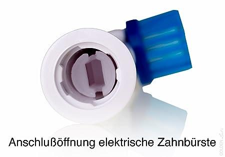 nevadent® 8 dientes nbürsten cabezales nazk 8 B1: Amazon.es: Salud y cuidado personal