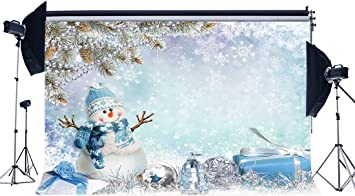 Christmas 10x6.5 FT Vinyl Photo Backdrops,Snow Falling in The Park on a Cold Winter Day Birds Lanterns Xmas Season Picture Background for Child Baby Shower Photo Studio Prop Photobooth Photoshoot