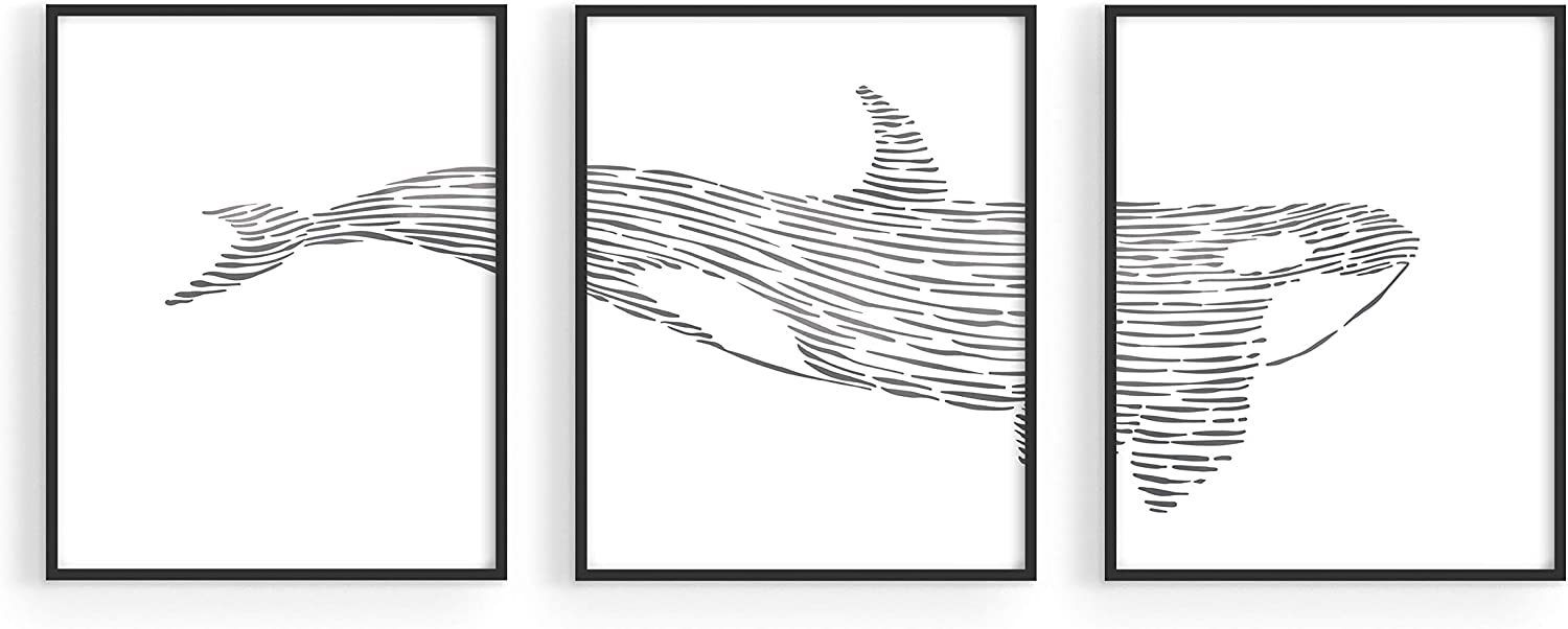 "Nautical Wall Decor and Ocean Wall Art - by Haus and Hues | Set of 3 Multi Panel Orca Wall Decor | Ocean Wall Art Set | Nautical Posters and Prints | Killer Whale Wall Decor (8""x10"", UNFRAMED)"