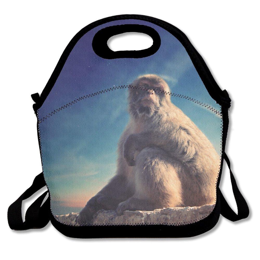 futonghuaxia monkey-animal-blue sky-overlook Durable al aire libre ...