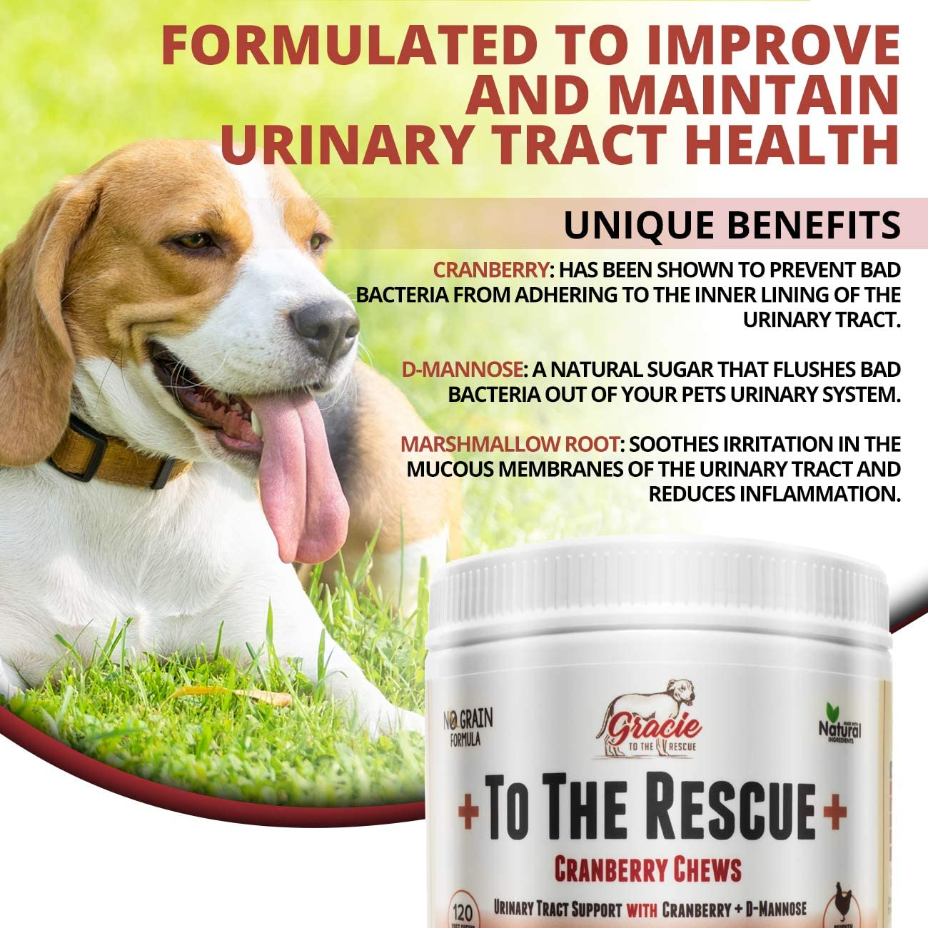 Natural Dog UTI Treatment – Cranberry for Dogs, Bladder and UTI Support for Dogs – Bladder Infection Relief with D-Mannose 120 Chicken Flavored Soft Chews to The Rescue