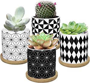 DeeCoo 3 Inch Succulent Planter Pots with Drainage and Tray, Small Geometry Ceramic Pots Set of 4 for Mini Flower, Cactus, Herbs and Indoor Plant, Succulents Pot for Wall, Window Sill or Desk Decor