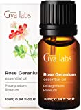 Gya Labs Rose Geranium Essential Oil - Mood Relaxer for Youthful Complexion & Happy Companions (10ml) - 100% Pure…