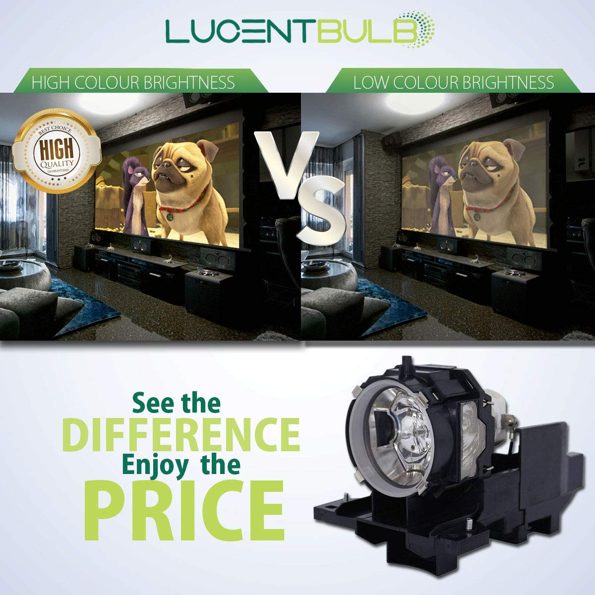 for Hitachi DT01481 Lamp Catridge by LucentBulb fits CP-AW2505 CP-AX2503 CP-AX2505 CP-BX301WN CP-TW2505 CP-WX3042WN