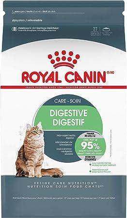 Royal Canin Cat Dry Food