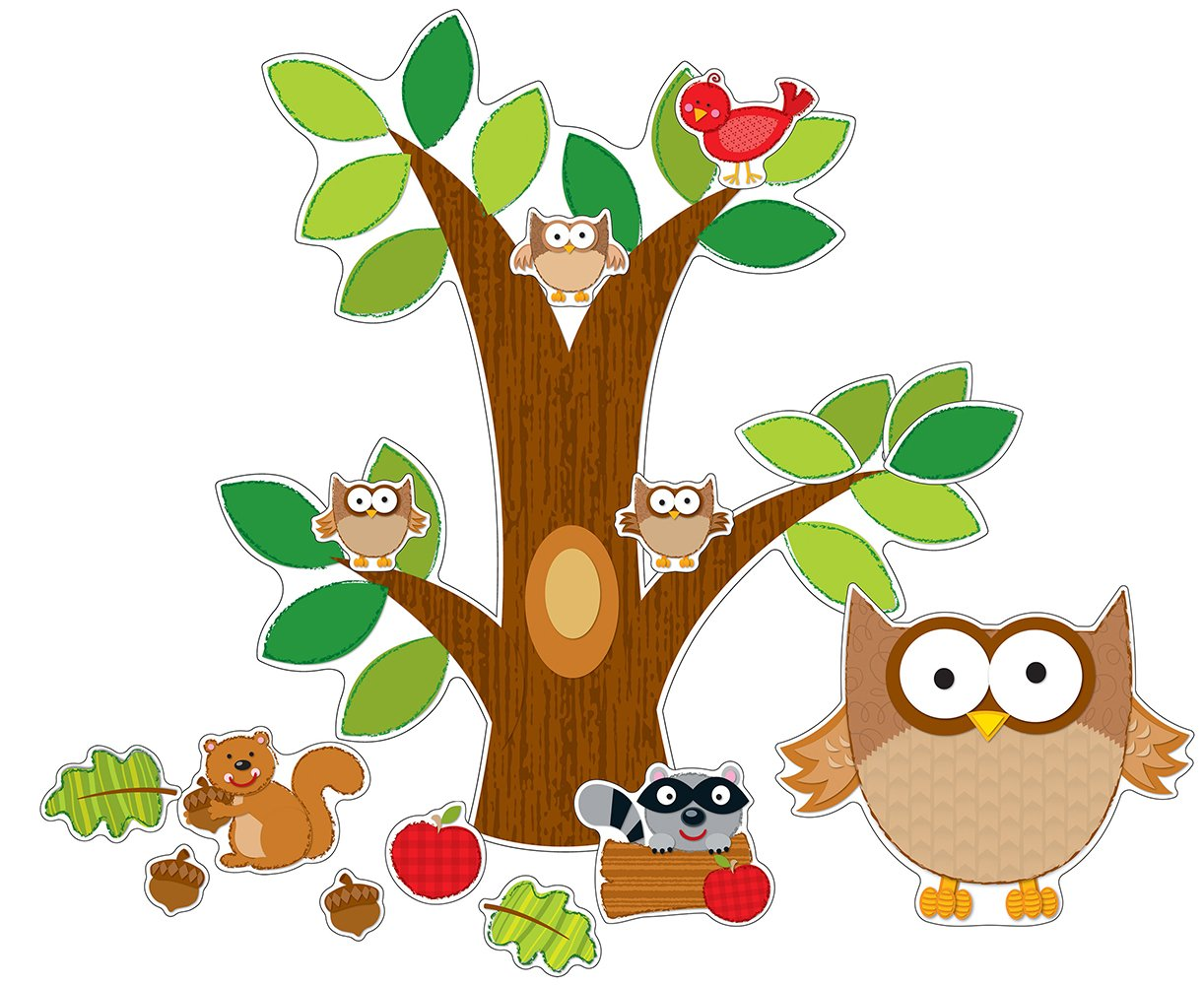 Carson Dellosa Owl Bulletin Board Set (110137) Carson-Dellosa Publishing Elementary Education Education / Elementary