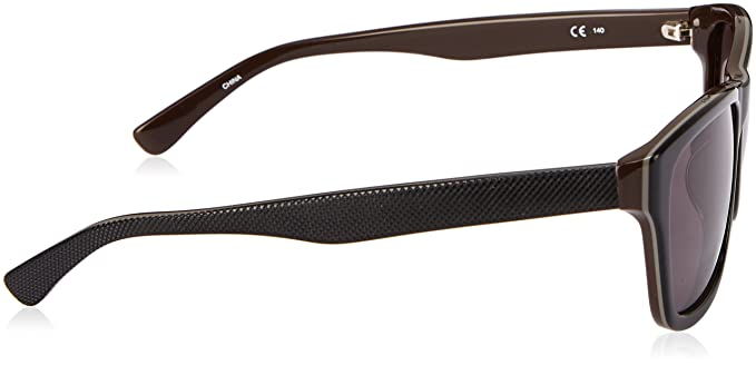 Amazon.com: Lacoste Mens Classic Wayfarer Sunglasses ...
