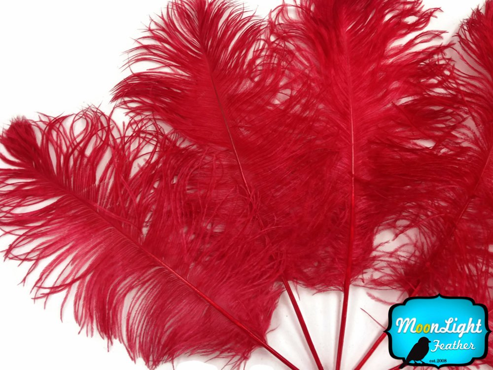1/2 Pound Red Ostrich Feathers Wholesale by Moonlight Feather