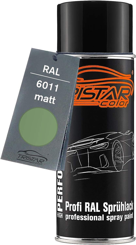 Ral 6011 Resedagrün Spraydose 400 Ml Matt Schnelltrocknend Baumarkt