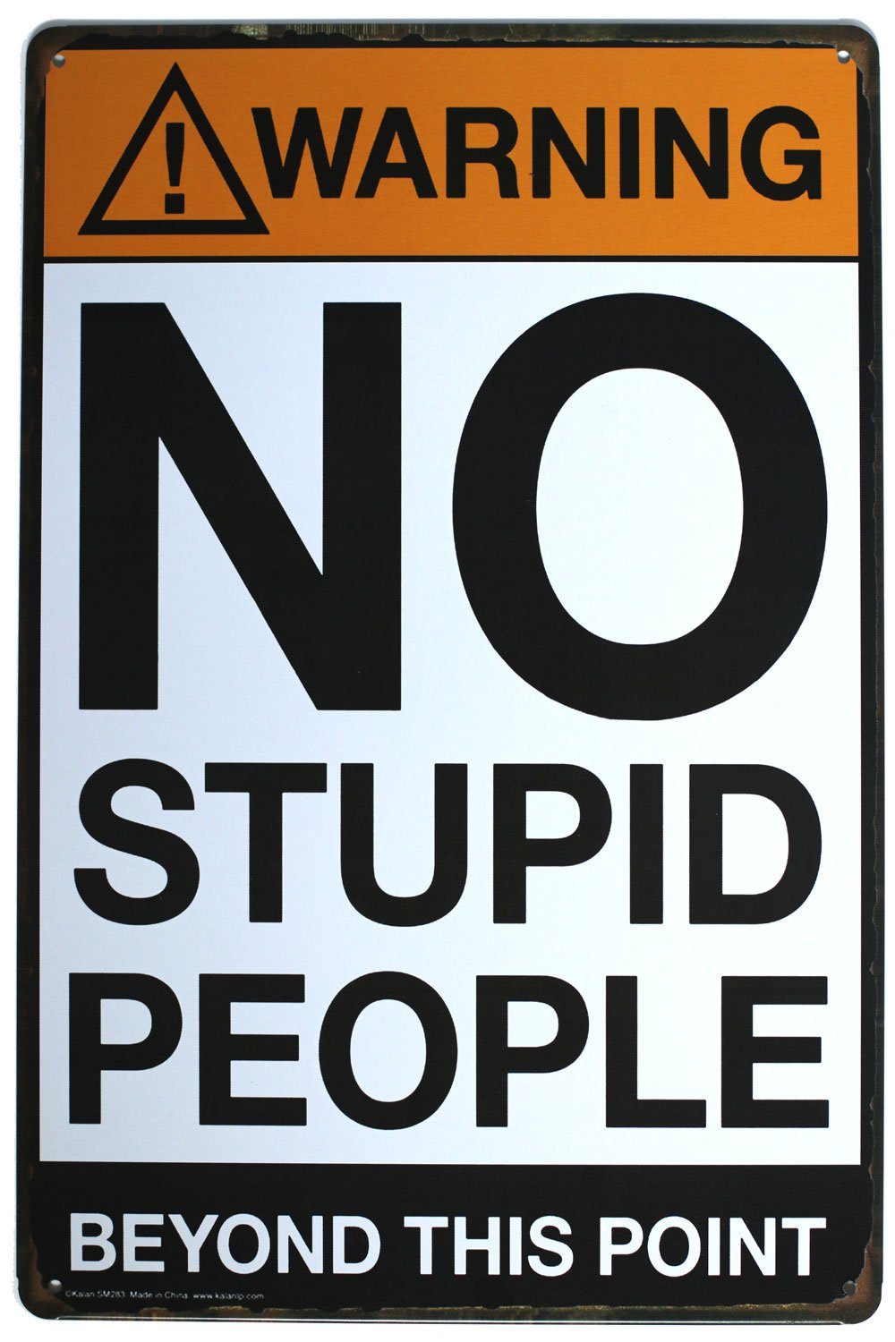 Warning No Stupid People Beyond This Point Tin Sign. Metal Tin Sign, Wall Decorative Sign, Size 8 x 12 Size 8 x 12 CHINA