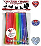 20 Chicken Charm Poultry Leg Bands - Includes Americas Favorite Super Hero's