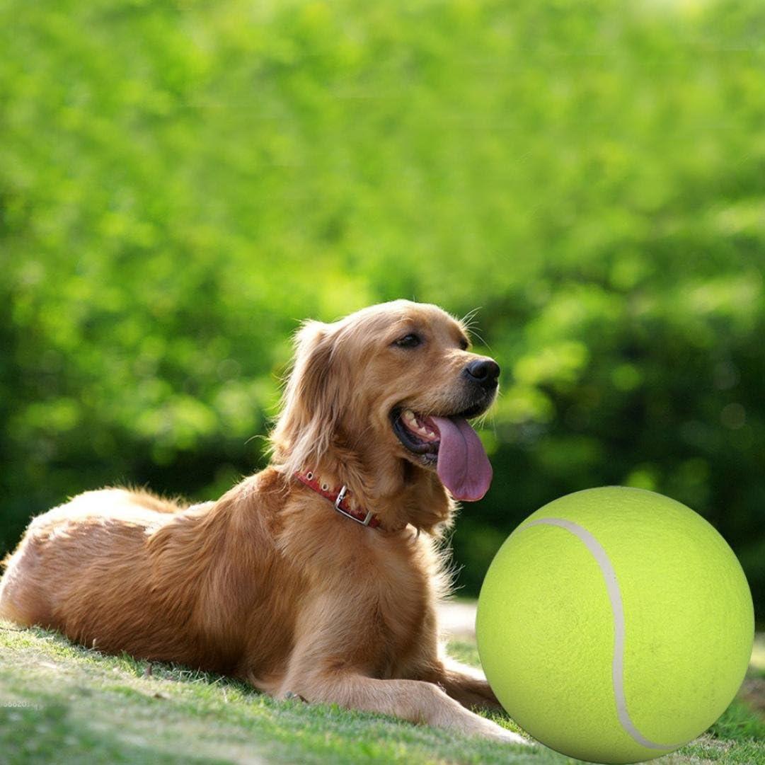 Amazon.com: binmer (TM) 24 cm gigante – Pelota de Tenis para ...