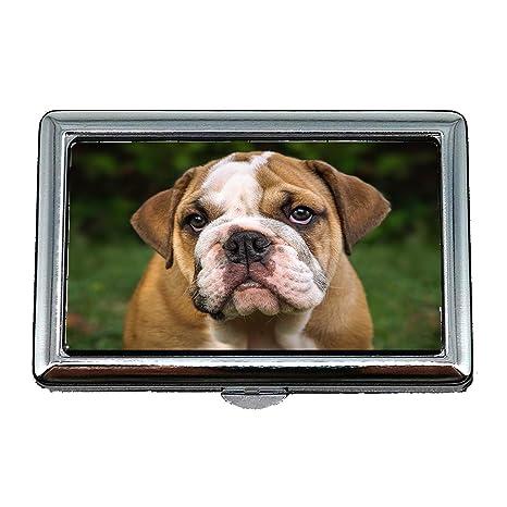 Zigarettenetui Box Englisch Bulldogge Hund Säugetier Cute