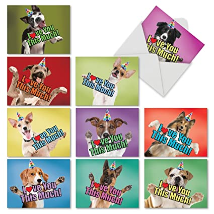 10 Boxed Doggie In The Window Assortment Of Birthday Cards 4