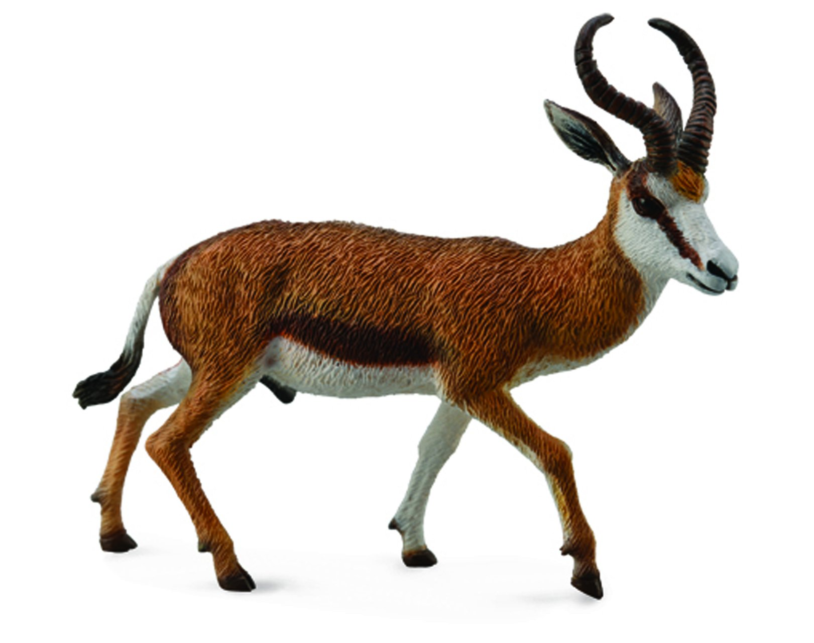 Collecta Wildlife Springbok Toy Figure - Authentic Hand Painted Model