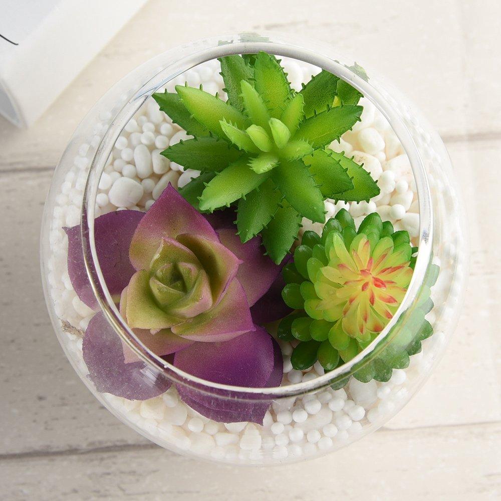 KUUQA 16 Pcs Mixed Artificial Succulent Flowers Plants Unpotted Decor Stems Fake Succulents Plants Bulk Assorted Picks Home Decor Indoor Wall Garden DIY Decorations by KUUQA (Image #4)