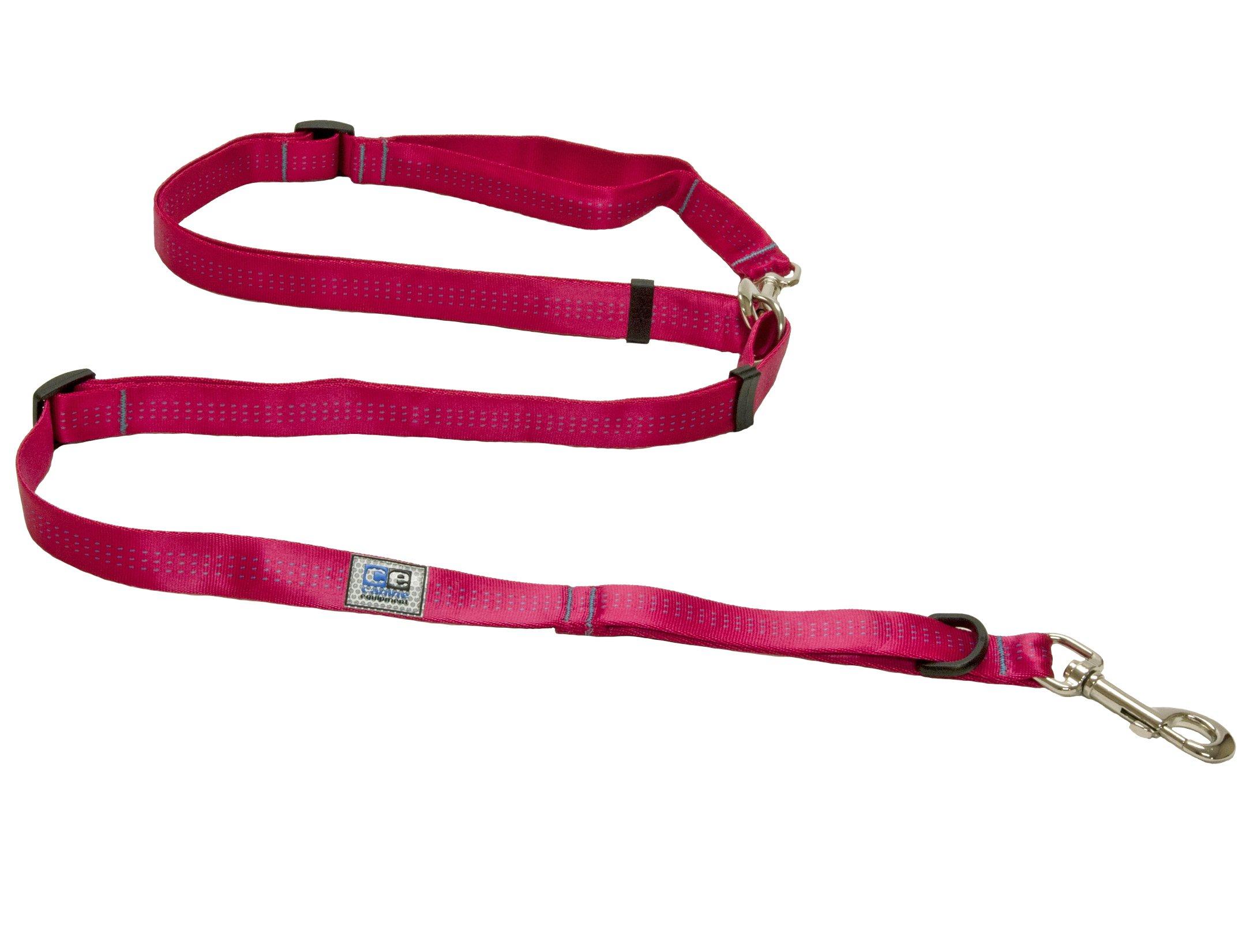 Canine Equipment 1-Inch Technika Beyond Control Dog Leash, Raspberry