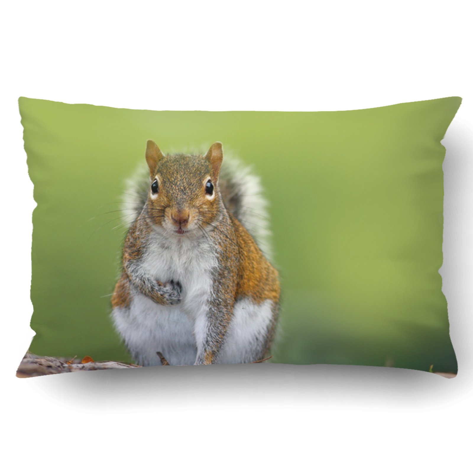 Emvency Pillow Covers Decorative Funny Image From Wild Nature Gray Squirrel Sciurus Carolinensis Cute Animal Bulk With Zippered 20x30 Queen Pillow Case For Home Bed Couch Sofa Car One Sided